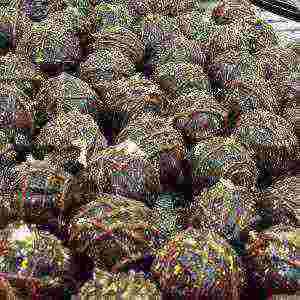 chocolate truffles gold